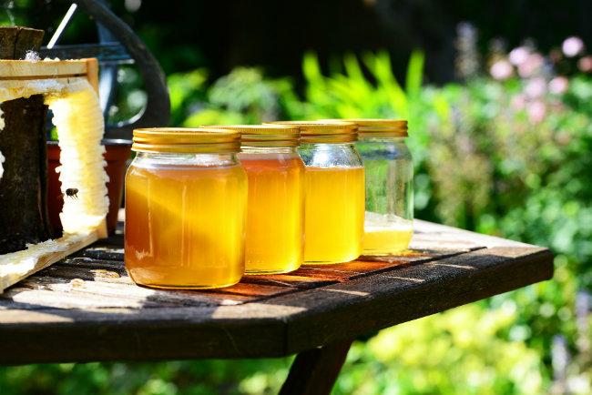 Le miel de forêt, produit parfumé et puissant